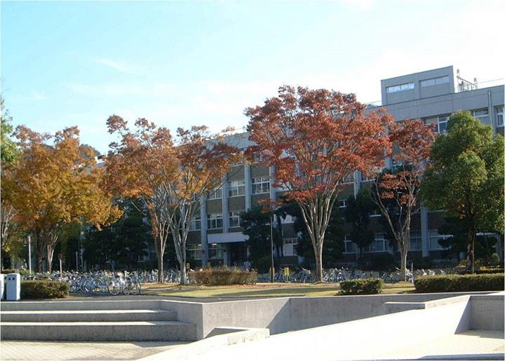山口大学1
